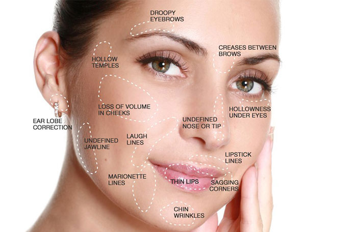 How And Where Do Fillers Work Nelson Center For